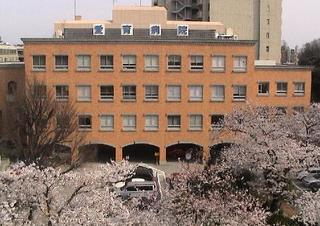 byouin-sakura.jpg